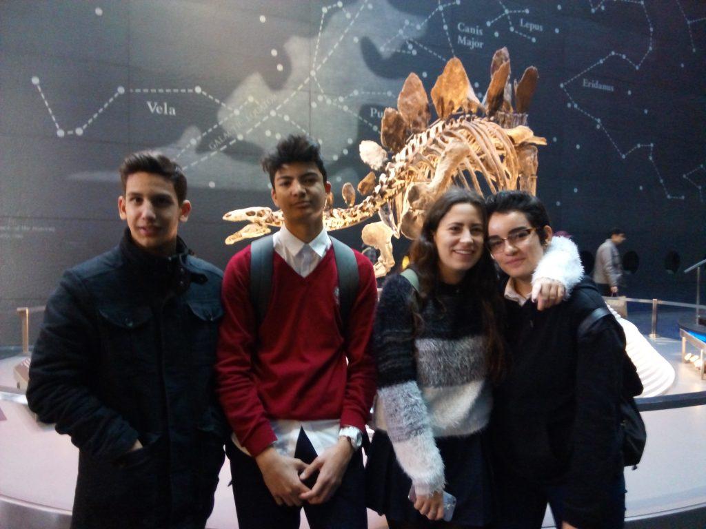 visita ao museo historia natural dinosaurio